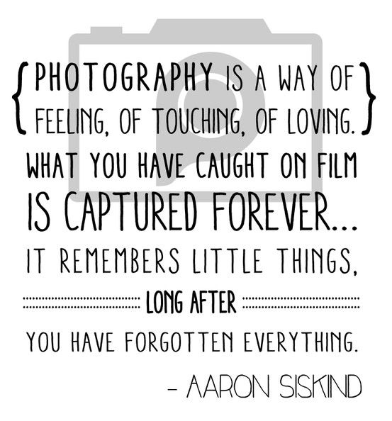 Photography Quote Fascinating 207 Most Amazing Photography Slogans & Quotes To Inspire You  Bayart