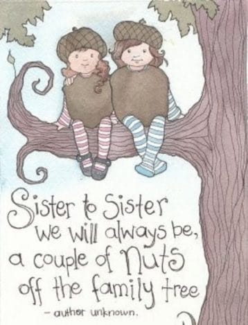 212 Exclusive Cute Funny Sister Quotes To Text Bayart