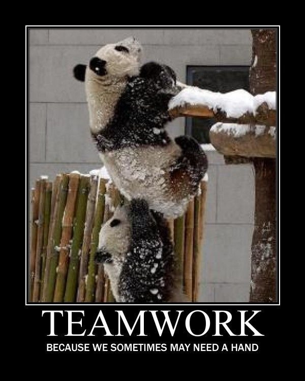 Top Teamwork Quotes to Celebrate Collaboration