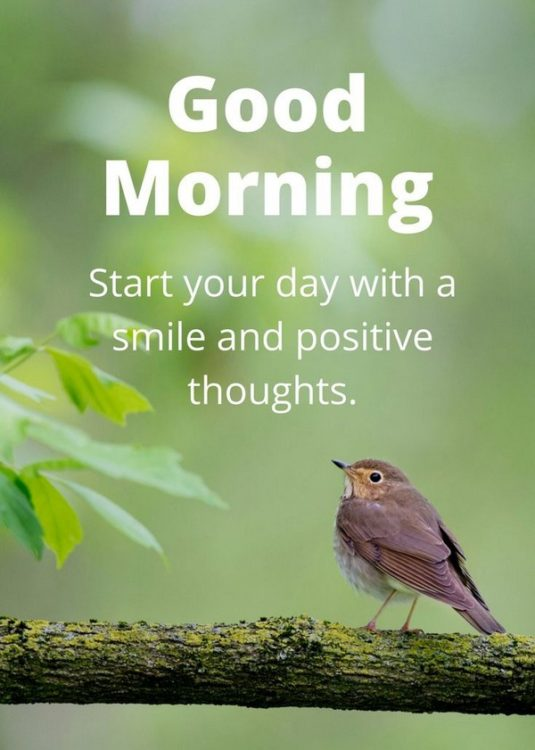 good morning image: Start your day with a smile and positive thoughts