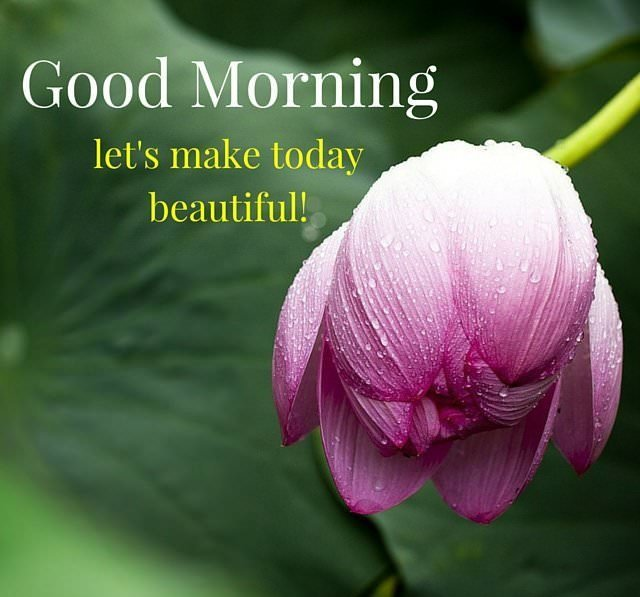 have a great day images: Let's make today beautiful!