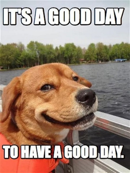 have a great day meme