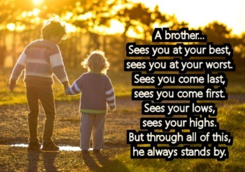 274+ Memorable Brother Quotes to Show Your Appreciation - BayArt