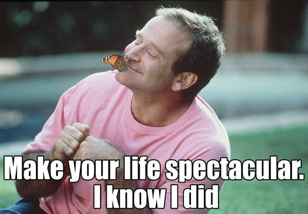 robin williams quotes on life