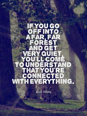 alan watts quotes the meaning of life