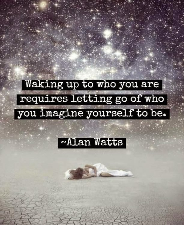 alan watts quotes waking up