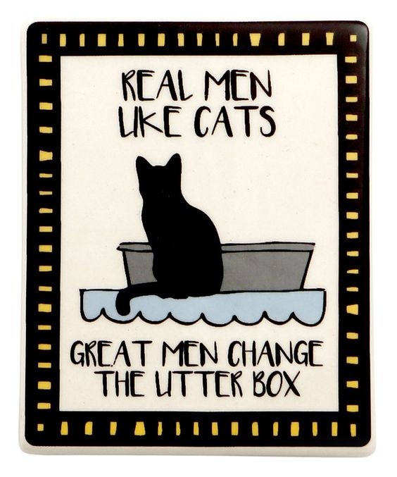 amazing quotes about cats