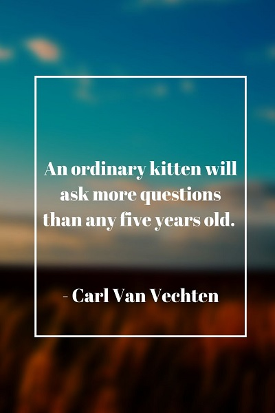 most famous quotes about cat
