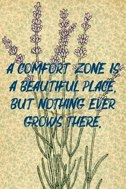 best comfort zone quotes