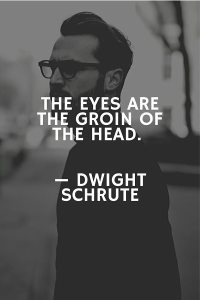 best of dwight schrute quotes ever