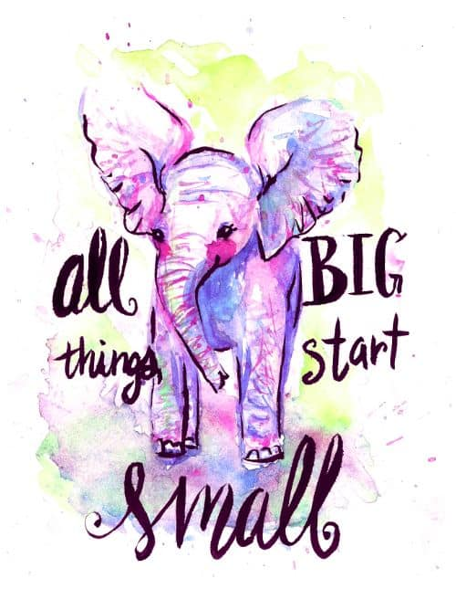 elephant quotes about strength