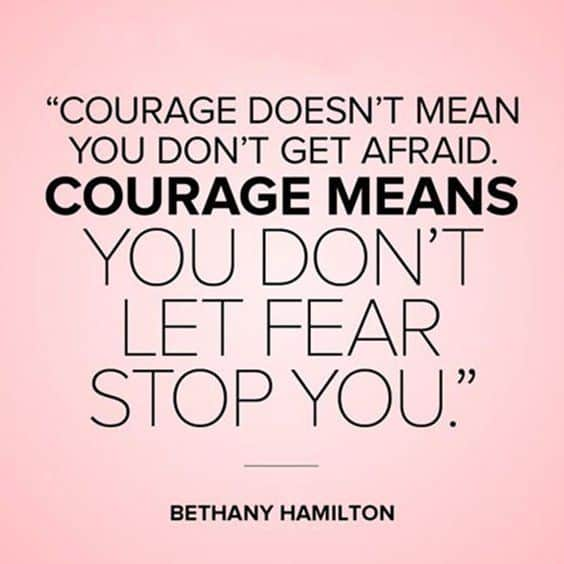 hamilton quotes on courage