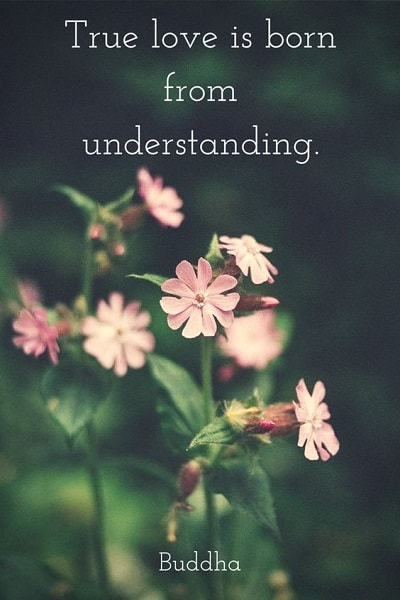 understanding quotes for love
