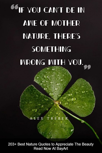 best nature quotes and sayings about Mother Earth's beauty