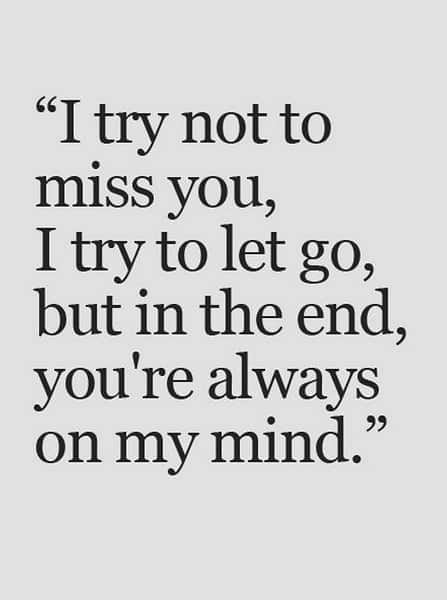crush quotes and sayings