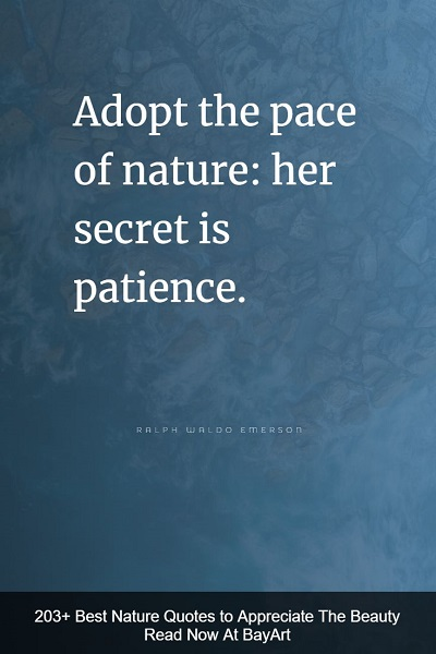 inspiring nature quotes and sayings