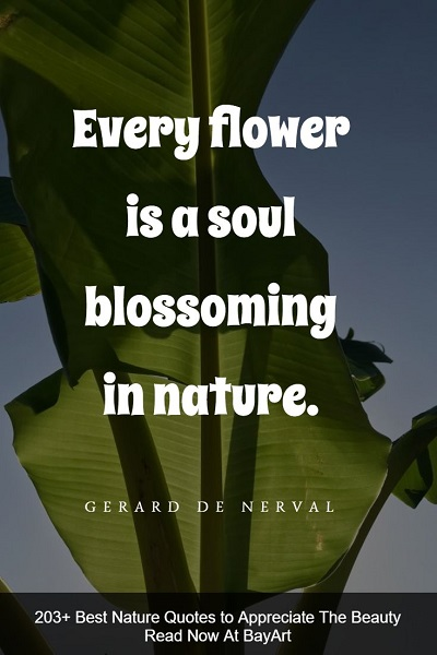 most famous nature quotes and sayings about Mother Earth's beauty
