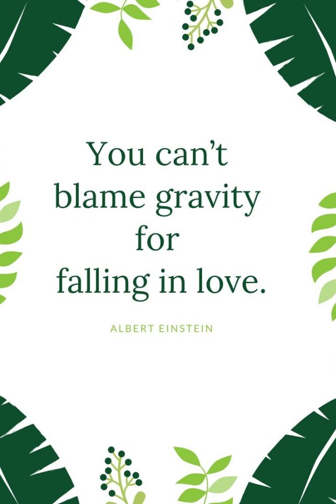 most famous quotes about falling in love