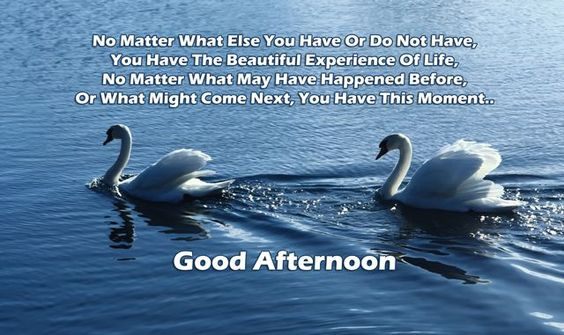 motivating good afternoon quotes