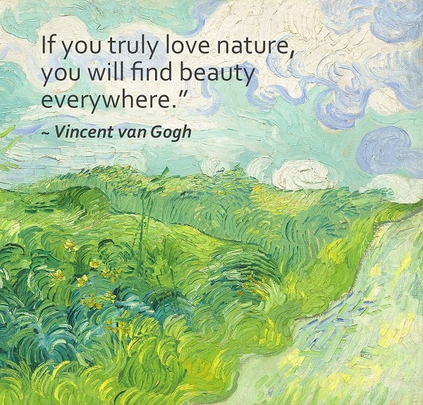 203+ EXCLUSIVE Nature Quotes That Will Remind You Beauty