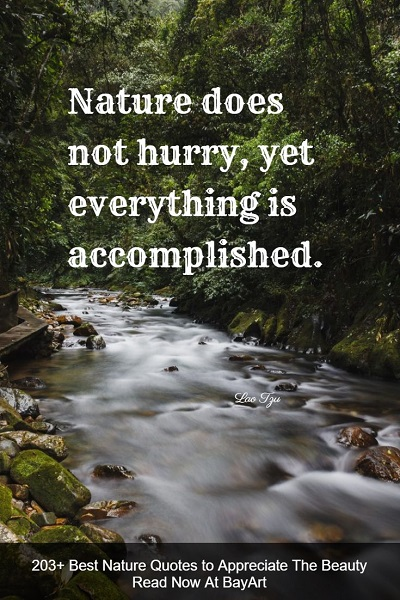 peaceful nature quotes and sayings