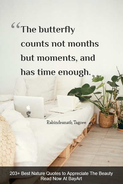 peaceful nature quotes