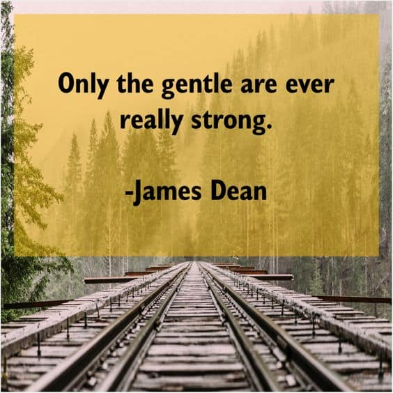 quotes by james dean