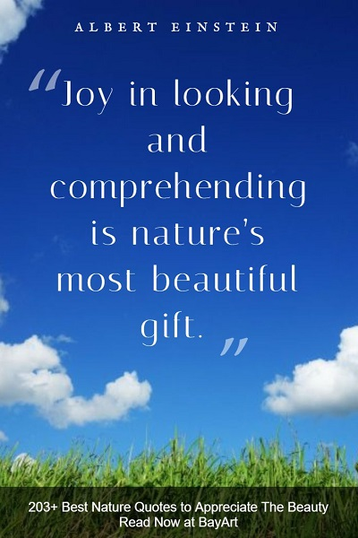 the best nature quotes and sayings of all time