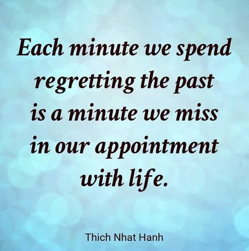 thich nhat hanh quotes on living moment