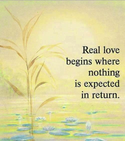 thich nhat hanh quotes on real love