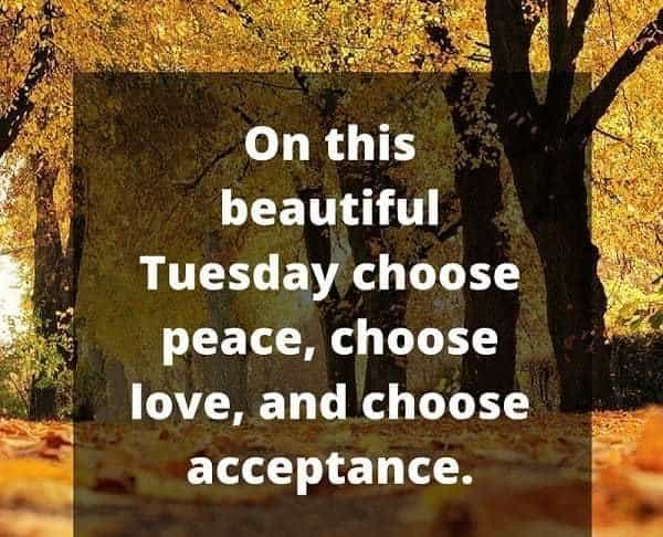 tuesday morning quotes and sayings