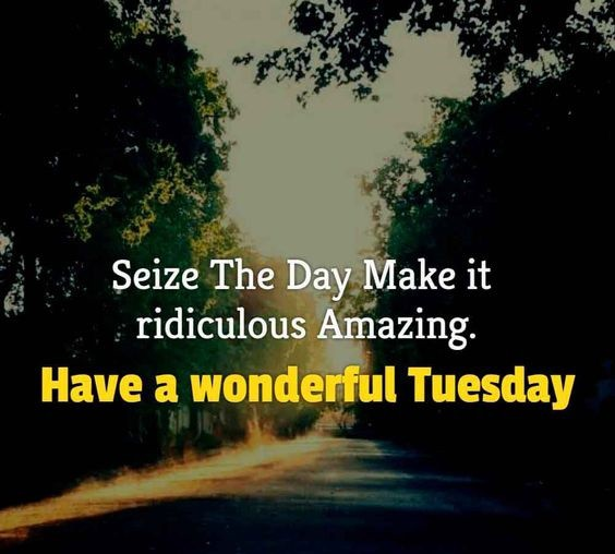 tuesday quotes with images