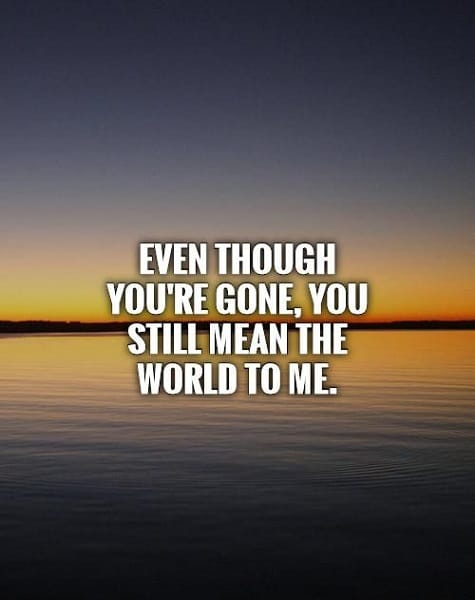 45 Exclusive You Mean The World To Me Quotes Bayart