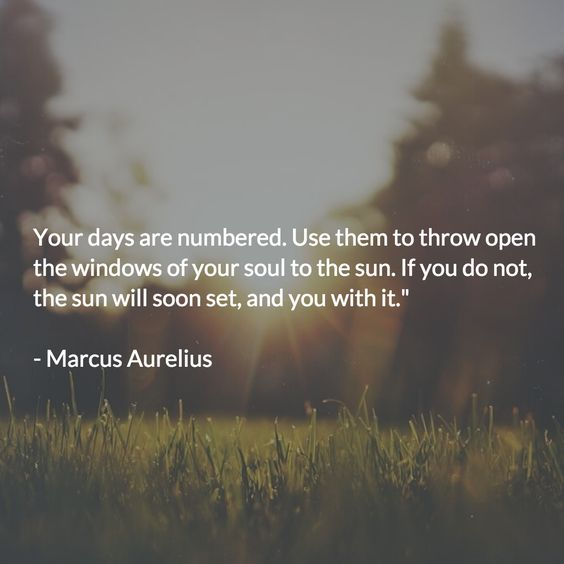 marcus aurelius quotes death