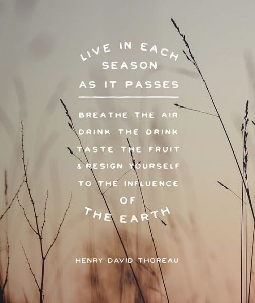 motivating thoreau quotes