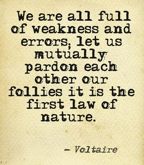 motivating voltaire quotes