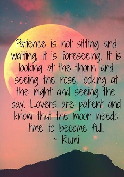 rumi quotes light