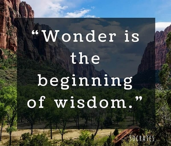 socrates quotes about wonder