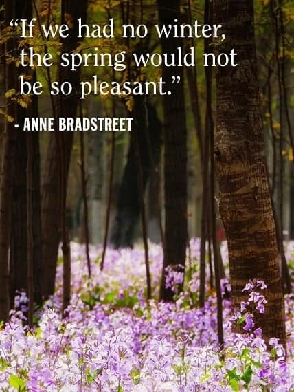 spring day quotes