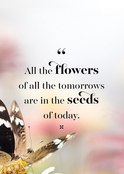 spring motivational quotes