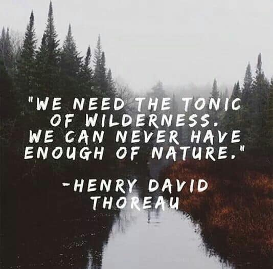 thoreau quotes about nature