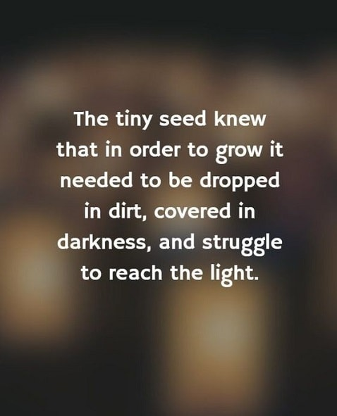 emotional growth quotes
