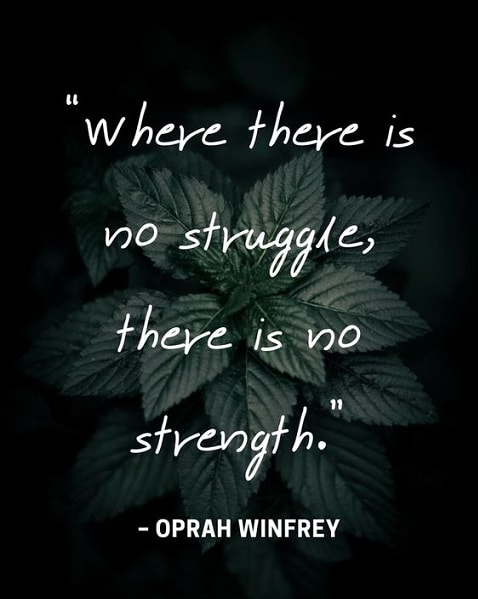 growth quotes and sayings