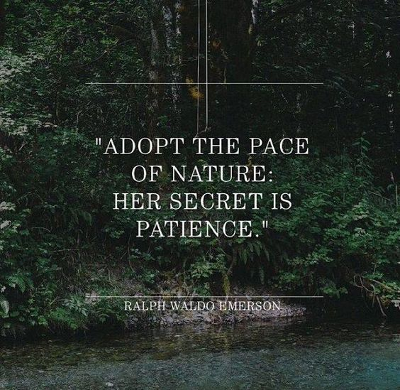 ralph waldo emerson quotes about nature