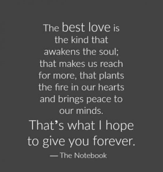 the notebook quotes the best kind of love