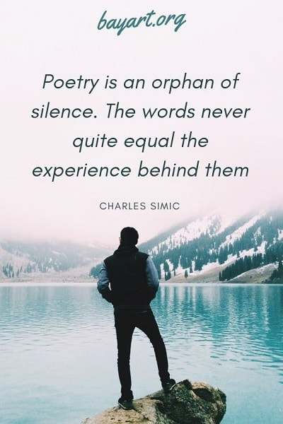 best quotes about poems