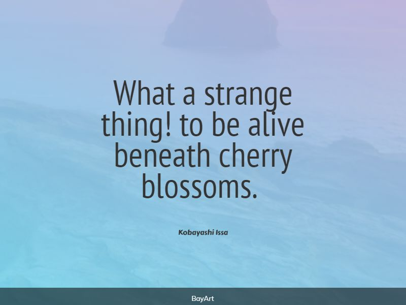 famous cherry blossom quotes