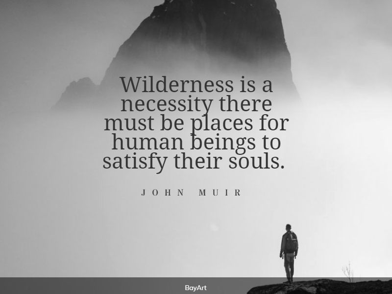 empowering wilderness quotes