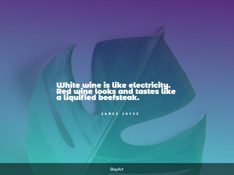 extremely funny wine quotes