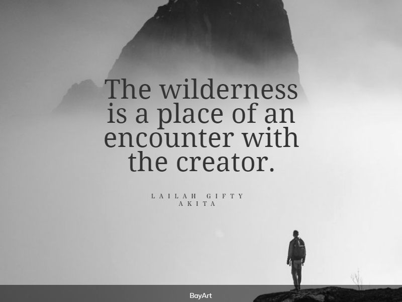 powerful wilderness quotes